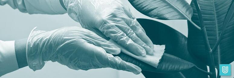 Choosing the right nitrile gloves for cleaning